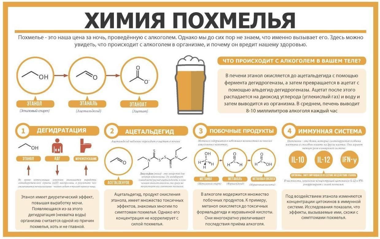 Можно ли пить кофе до и после алкоголя: правила совместимости