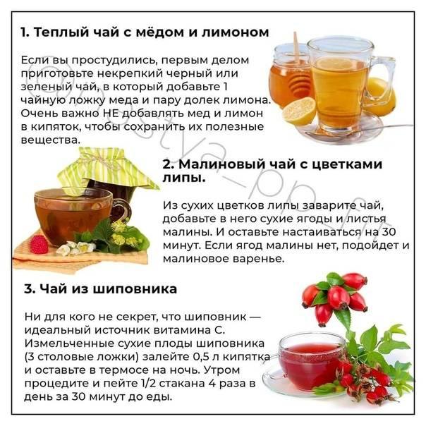 Чай от простуды: полезные свойства, народные рецепты и рекомендации