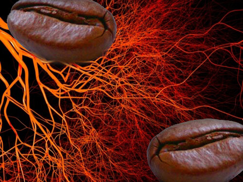 Кофе сужает или расширяет сосуды головного мозга, его влияние на сердце