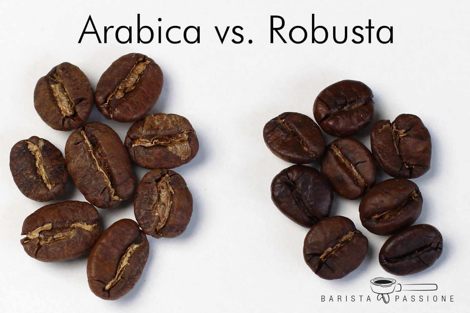 Характеристика эфиопского кофе