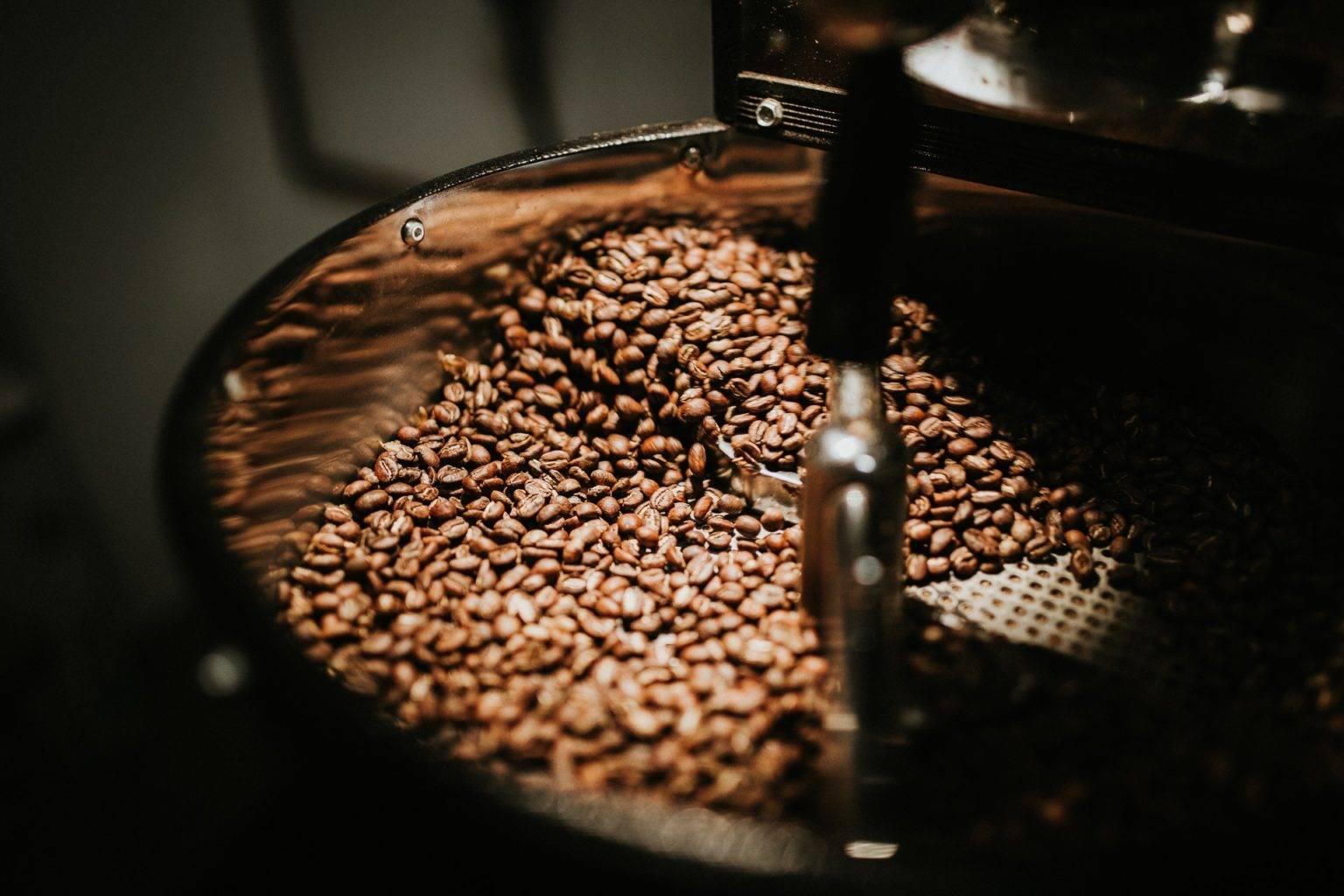 Сколько времени нужно для созревания сырого кофе. как собирают кофейные зерна
