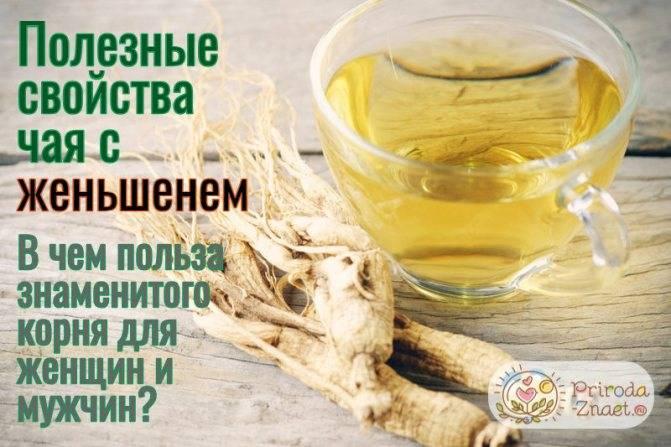 Настойка женьшеня - инструкция по применению для мужчин и женщин, полезные свойства лекарственного растения, цена