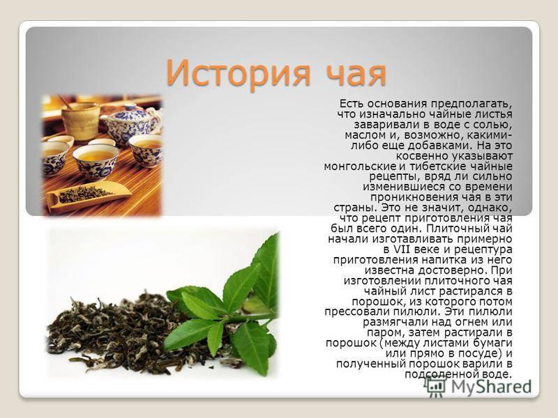 50 интересных фактов о чае — общенет