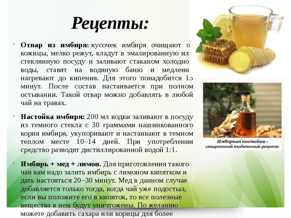 Хрен: лечебные свойства и противопоказания, полезные рецепты