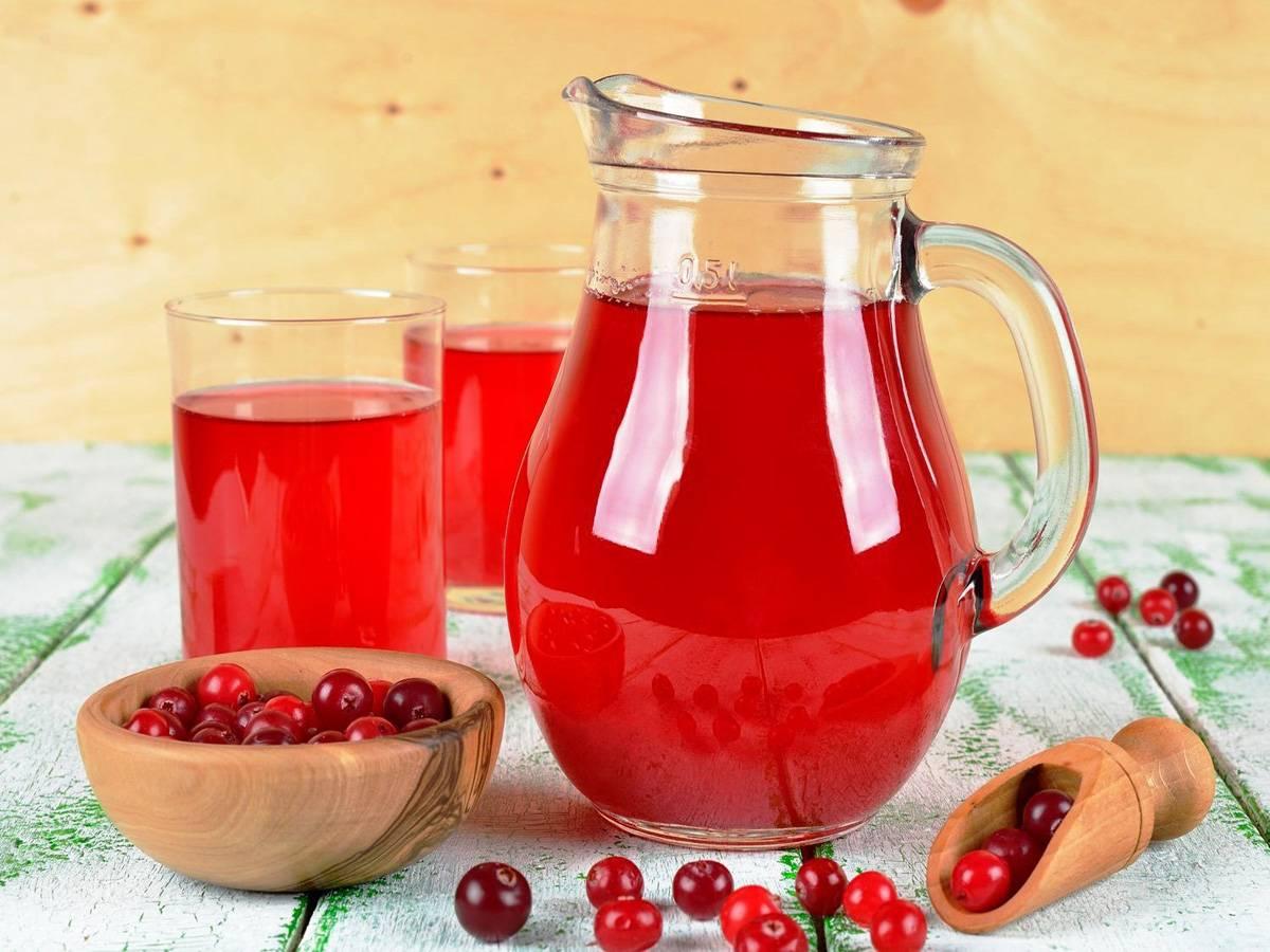 Брусничный морс - польза и вред, калорийность