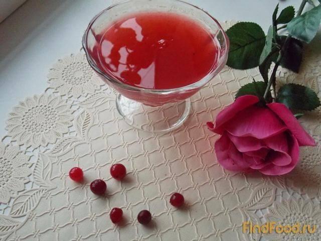 Кисель из клюквы – 7 рецептов приготовления