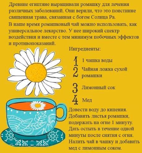 Ромашковый чай для грудничка, отвар и другие препараты ромашки: можно ли их давать младенцам?