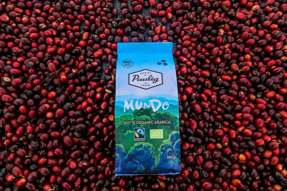 Кофе бурбон (сорт арабики): описание свойств, аромата, вкуса