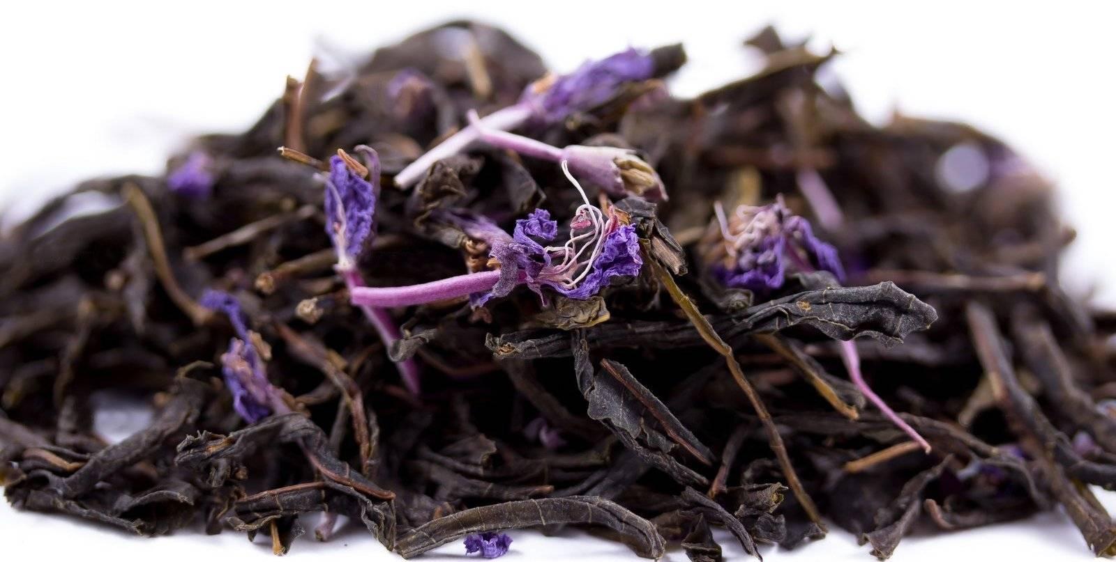 Чай из листьев растений: сбор, сушка, рецепт приготовления