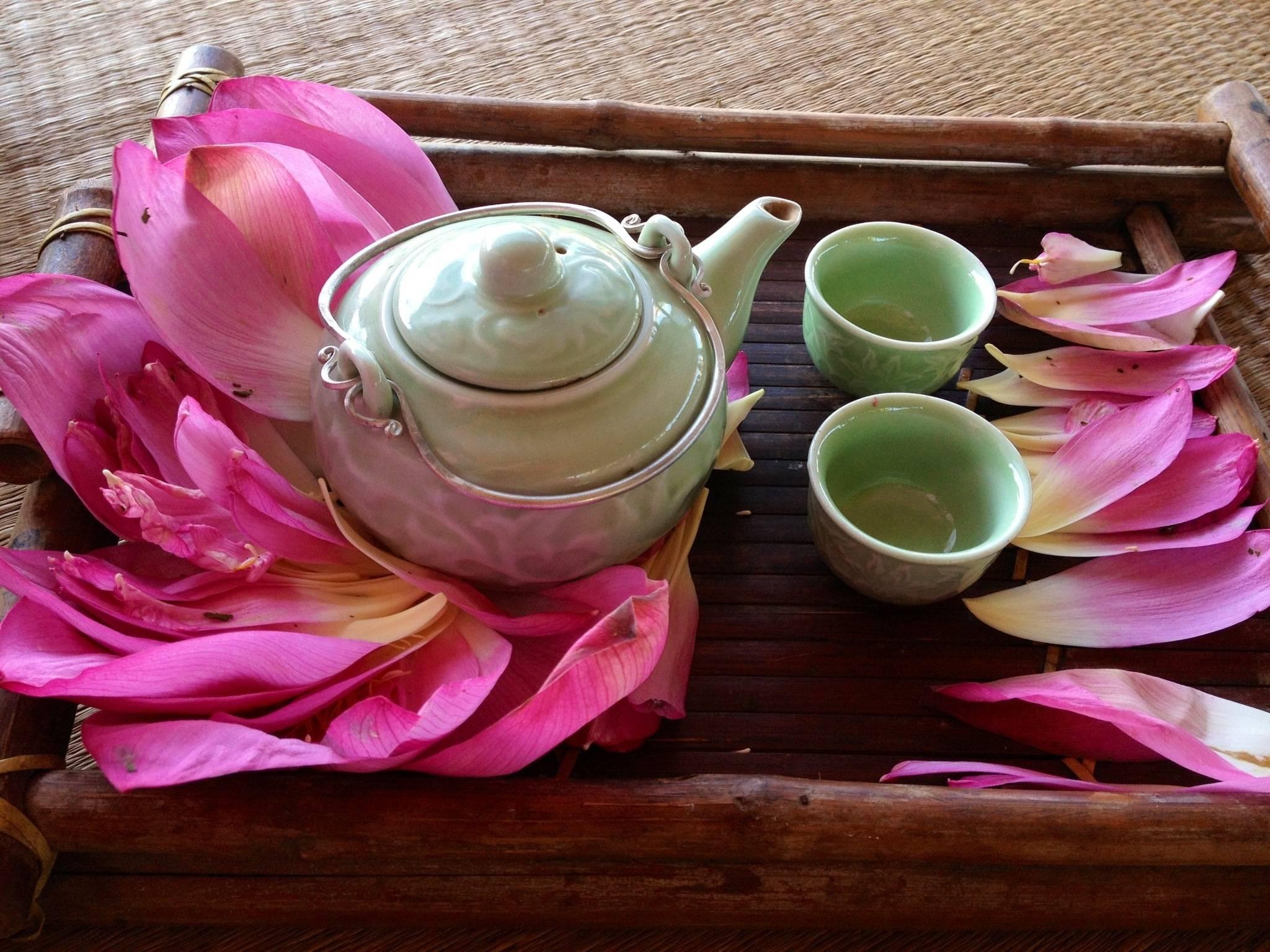 Зеленый чай лотос из вьетнама- рецепт пошаговый с фото