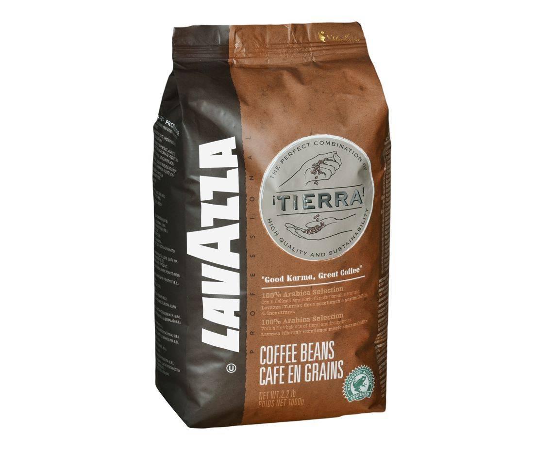 Какой кофе в зернах лучше — рейтинг стран производителей