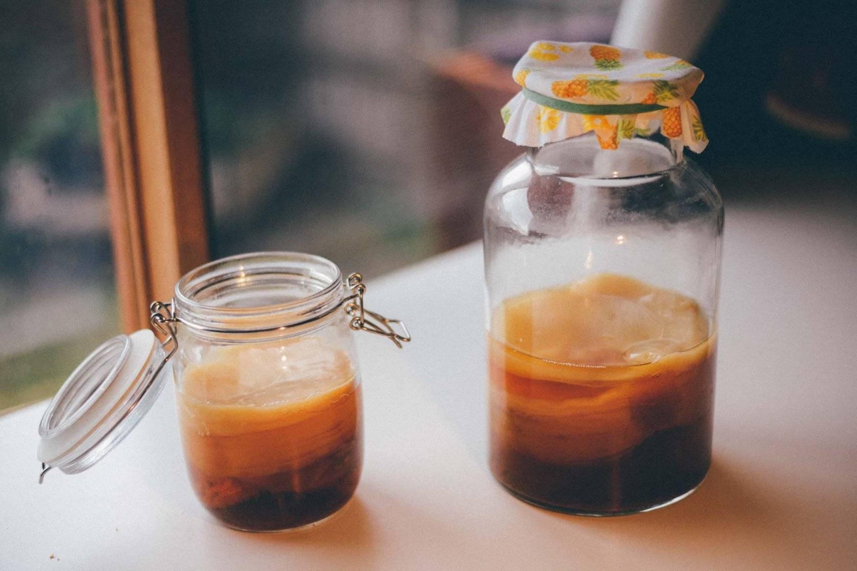 Комбуча - чайный гриб: польза и вред, как приготовить и ухаживать