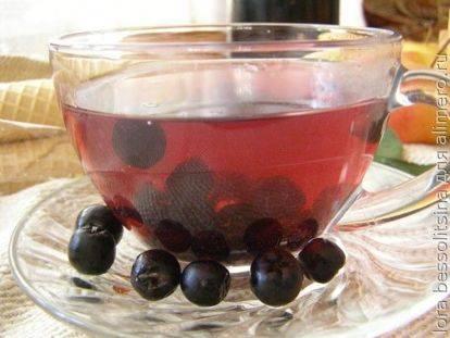 Рябина черноплодная – лечебные свойства и противопоказания