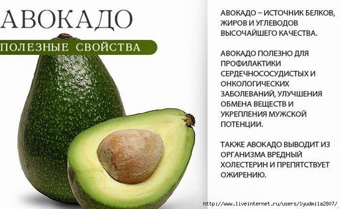 Авокадо — его полезные свойства применение и какие есть противопоказания