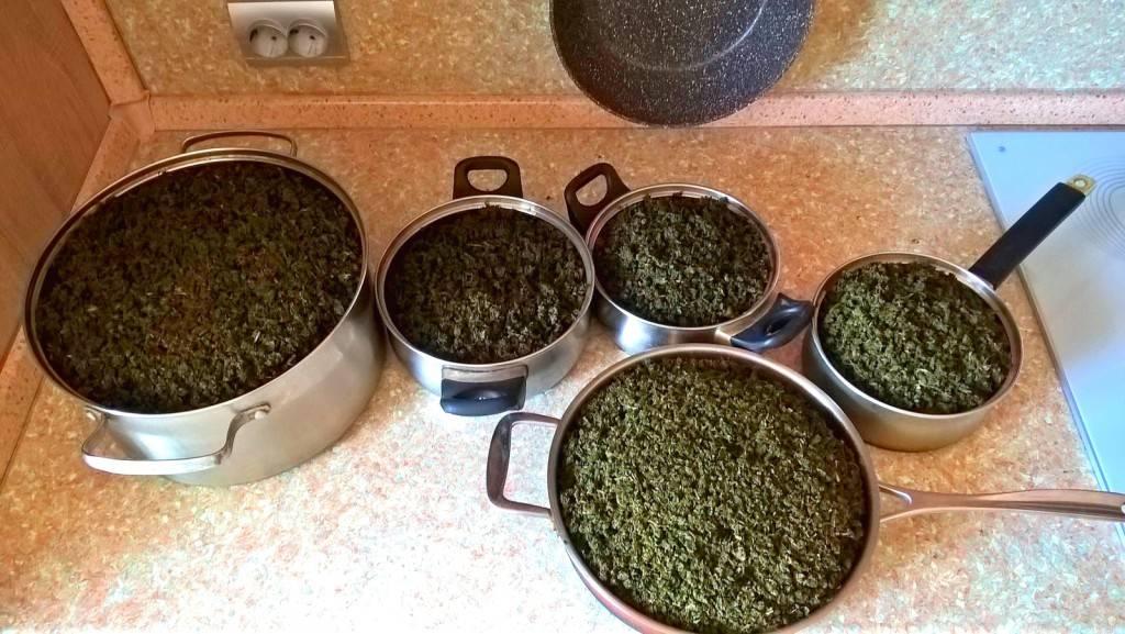 Как приготовить иван-чай в домашних условиях пошагово