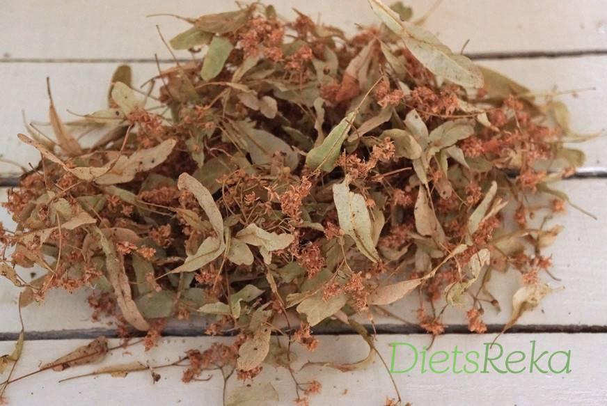 Как сушить мяту: варианты сушки в домашних условиях, требования к подготовке травы и способы хранения - целебные травы