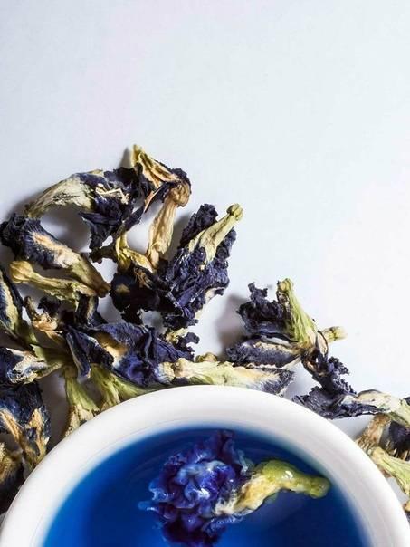 Синий чай для похудения: свойства, приготовление и применение, противопоказания