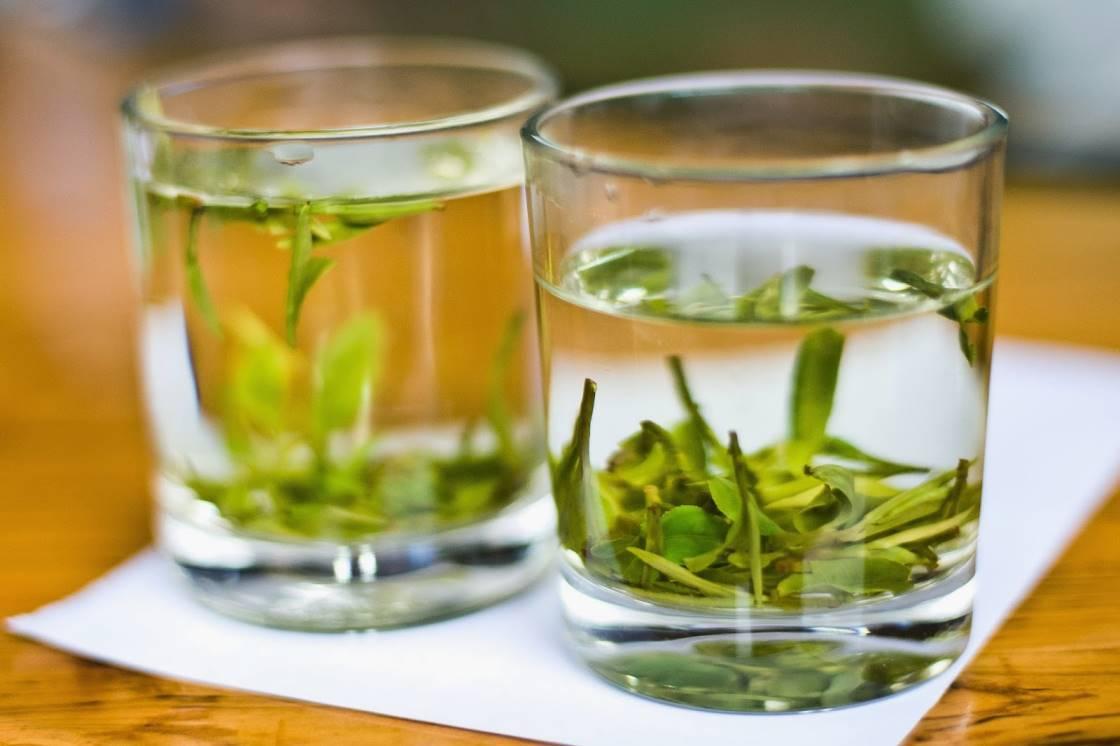 Чай БиЛоЧунь: полезные свойства и заваривание