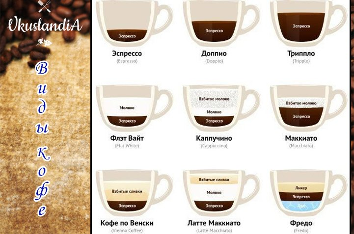 Виды кофе и их описание – классификация по разным признакам