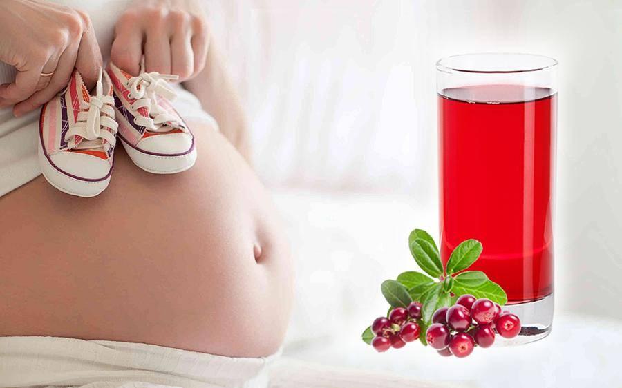 Как правильно пить каркаде при беременности, чтобы избежать вреда для здоровья