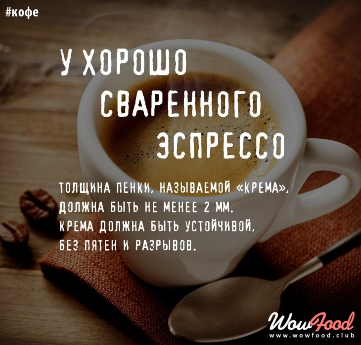 258 коротких фраз о кофе: список красивых цитат, афоризмов и высказываний знаменитостей со смыслом