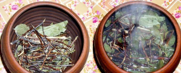 Ветки вишни: польза и вред, лечебные свойства и противопоказания, состав и применение. как употреблять чай и заварить отвар из веточек