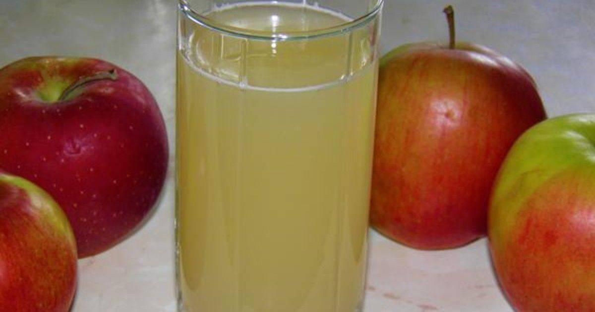 Яблочные квасы – доступность рецептов, простота технологии. освежающий и целебный яблочный квас за сутки, и даже быстрее