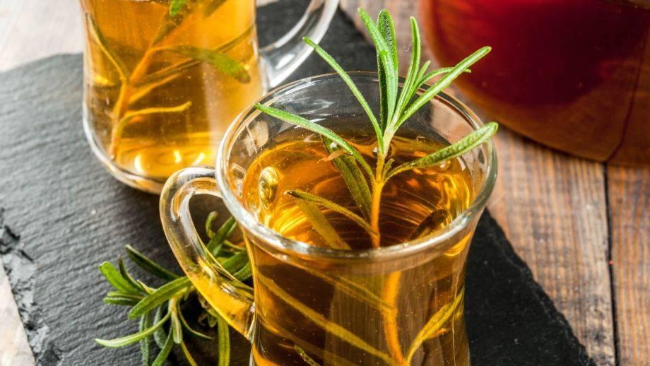 Польза и вред чая из розмарина для нашего организма