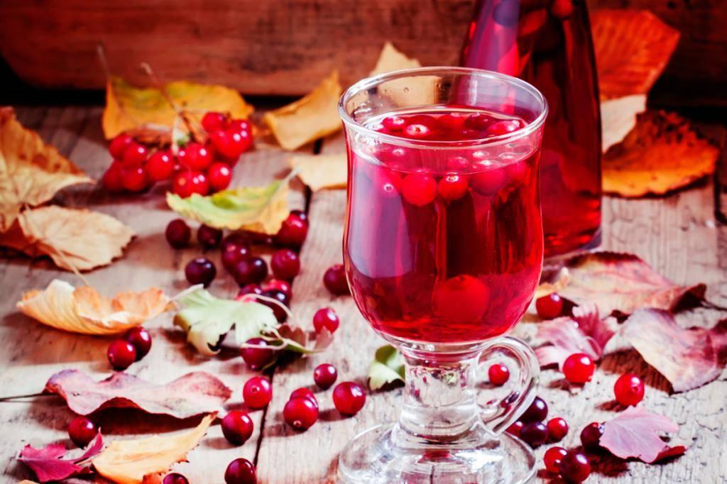 Лечебные напитки из клюквы: рецепты приготовления