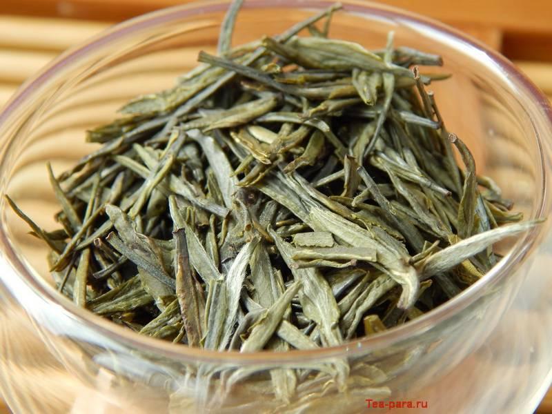 Чжу е цин (свежесть бамбуковых листьев) – описание, как заваривать