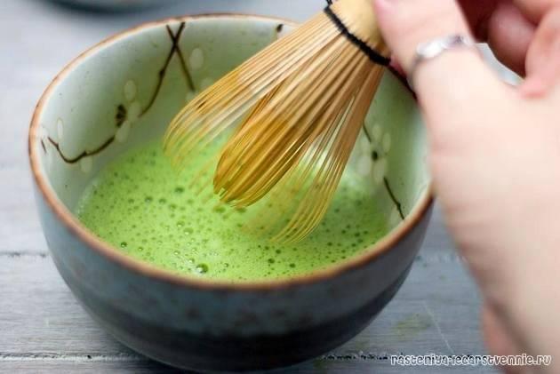 Что такое чай матча (маття), польза, как заваривать