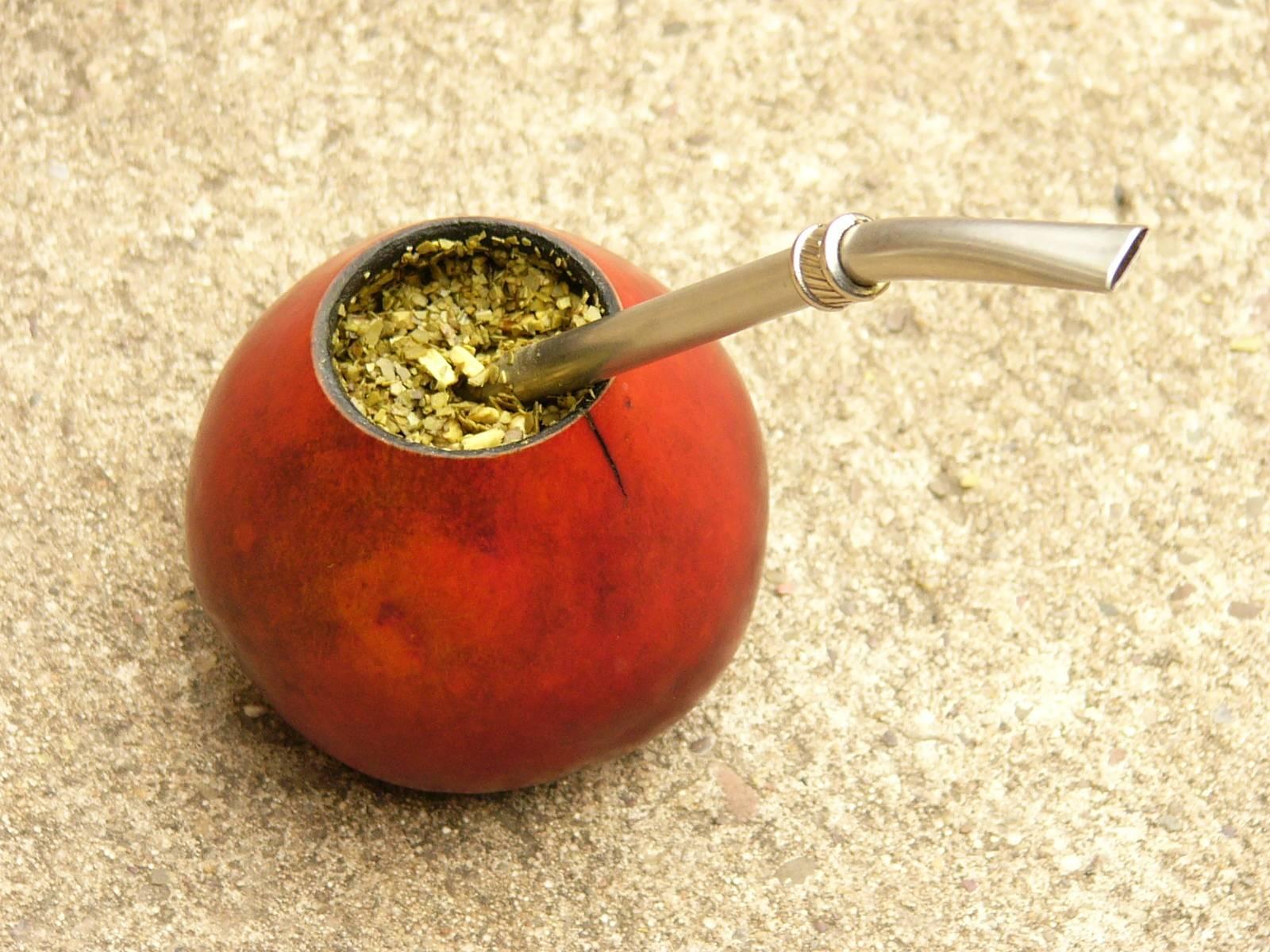 Чай мате – польза и вред экзотического напитка