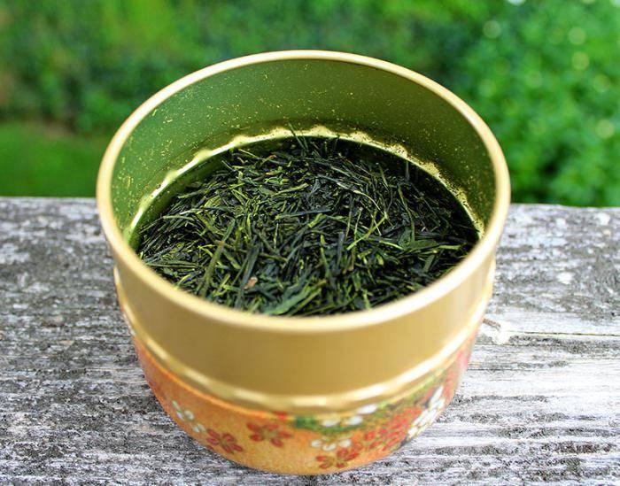 Спитой чай как удобрение - как использовать