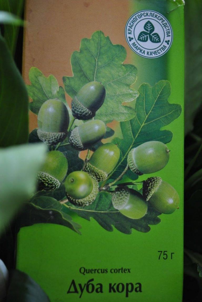 Лечебные свойства дубовой коры против паразитов