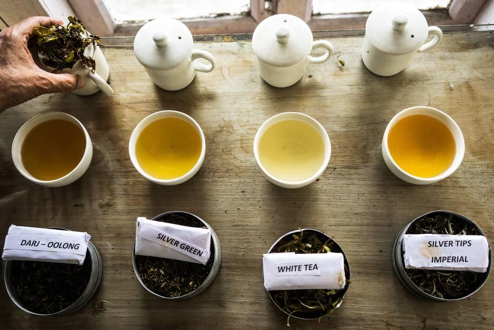 Самый вкусный и лучший чай – хороший напиток в каждый дом