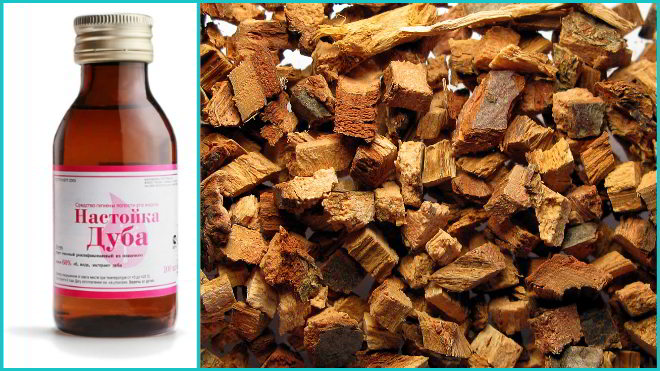 Кора дуба — лечебные свойства, противопоказания, применение | здоровье и красота