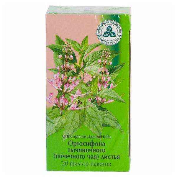 Чай для почек: список трав, особенности употребления