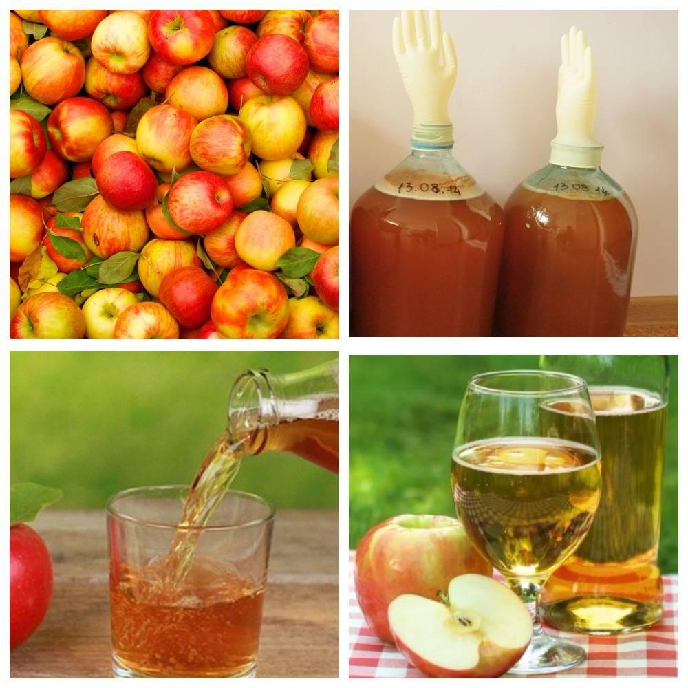 Из яблок быстро и вкусно - 233 домашних вкусных рецепта приготовления