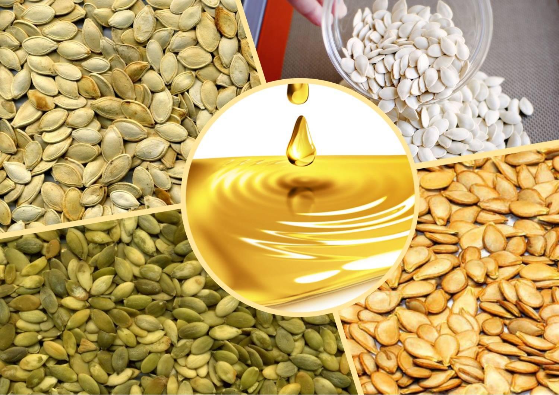 Тыквенные семечки - польза и вред. как принимать семена тыквы мужчинам и женщинам для лечения болезней