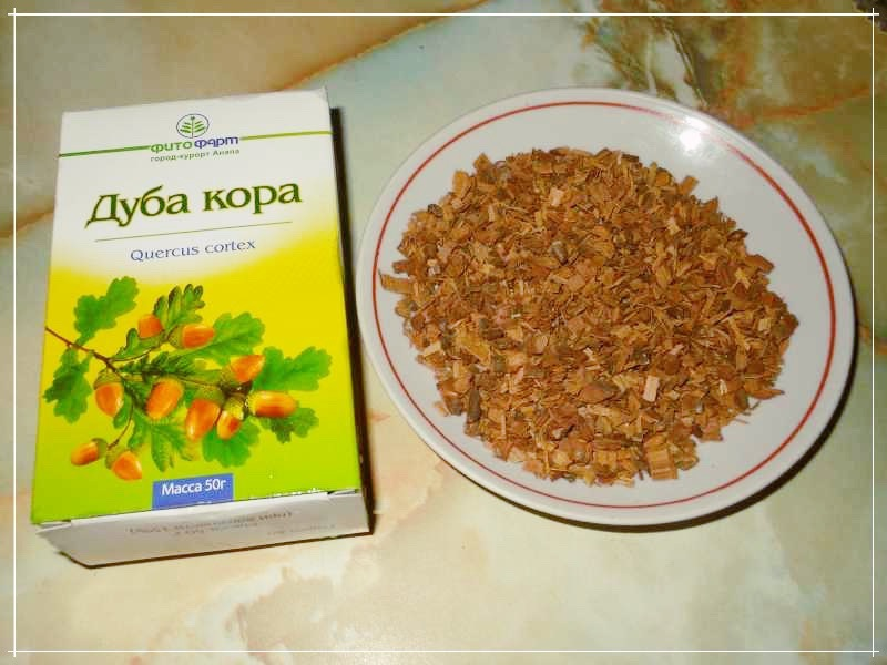 Кора дуба - лечебные свойства и противопоказания, народные рецепты, состав