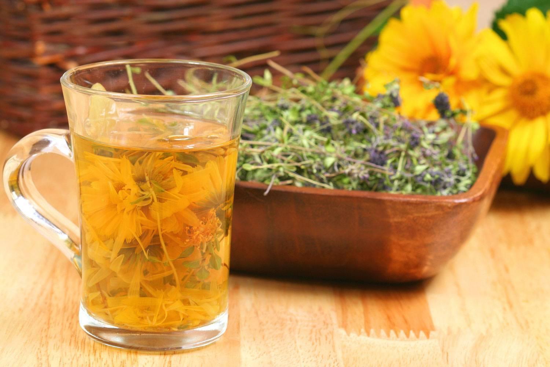 Лучшие рецепты травяных чаев от кашля