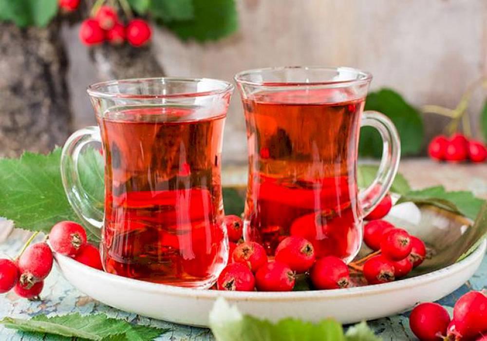 Чай из боярышника, польза и вред, области применения