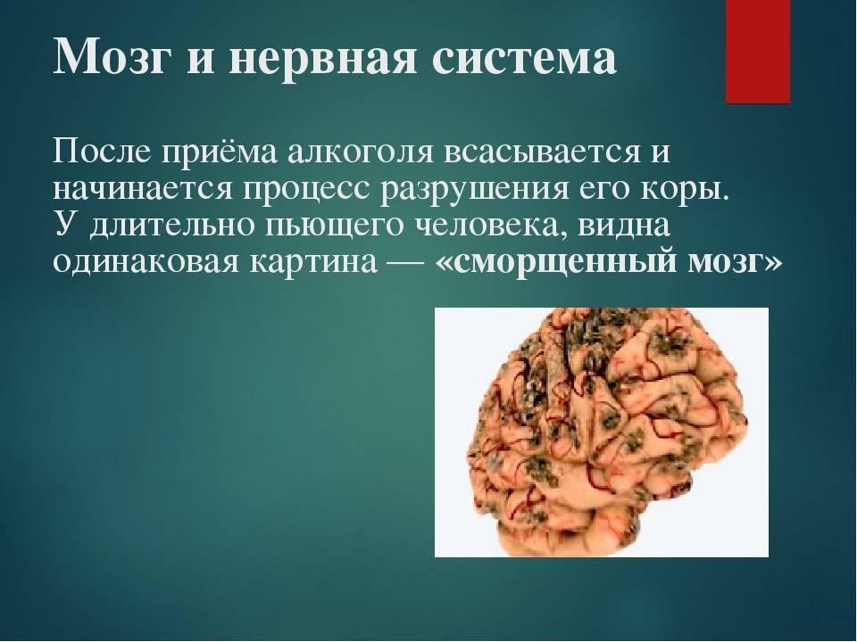Кофе и сосуды головного мозга польза или вред