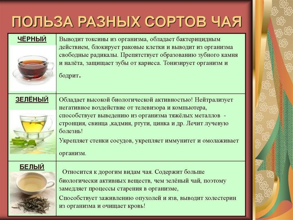 Влияние зеленого чая на мужчин