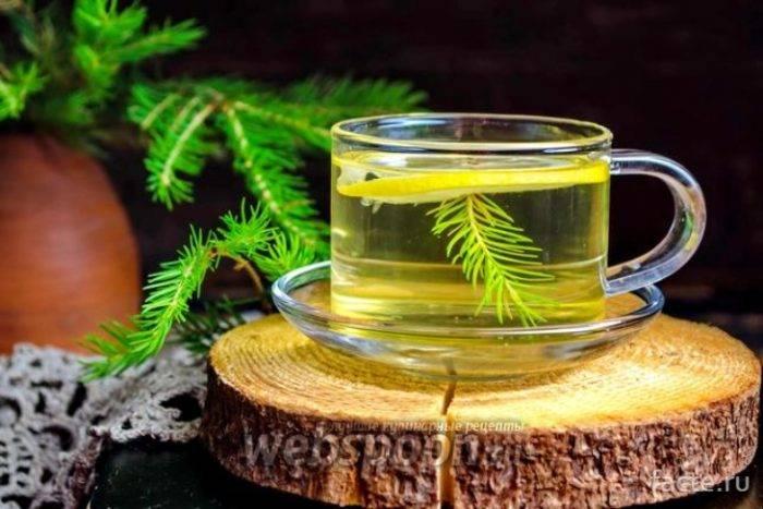Хвойный квас на медной воде от сибирского лекаря. хвойный квас. чудо - средство для здоровья и долголетия.