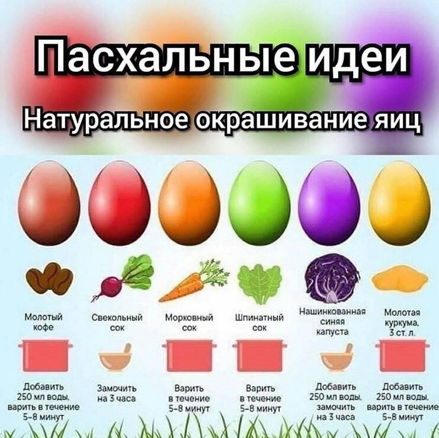 Покраска яиц на пасху: экологичные рецепты и вдохновляющие идеи