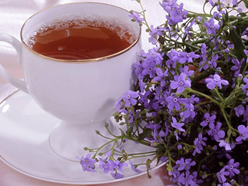 Чай с чабрецом: полезные свойства и чем может быть вреден | польза и вред