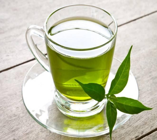 Зеленый чай - полезные свойства и противопоказания