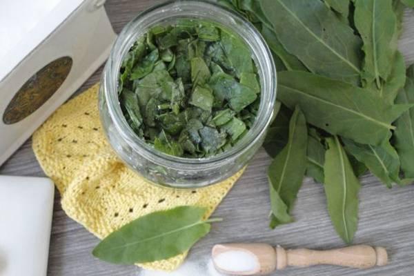 Базилик сушеный: применение, свойства, как сушить в домашних условиях, чем полезен