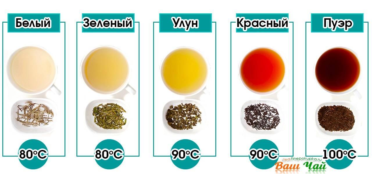 Спитой чай в качестве удобрения и его применение в быту